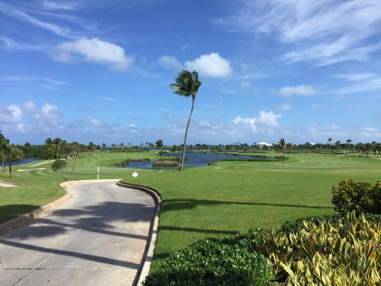 Ocean Club Golf Course : another hole