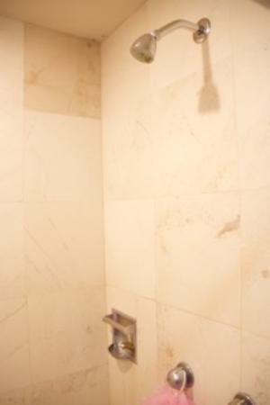 Hotel Fortin Plaza: shower
