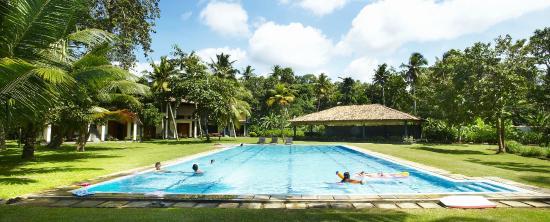 Talalla Retreat: Talalla Retreat pool
