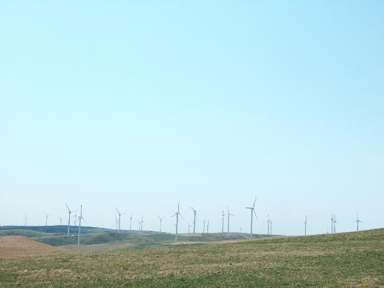 Cape Soya Wind Farm