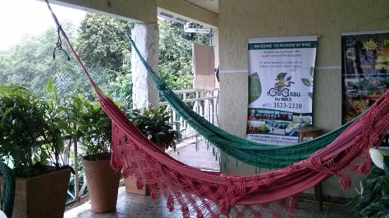 Green House Hostel: Relaxing area