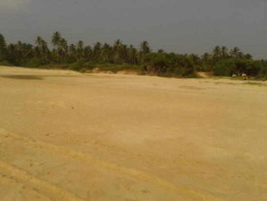 Cansaulim Beach: Beautiful and no one there