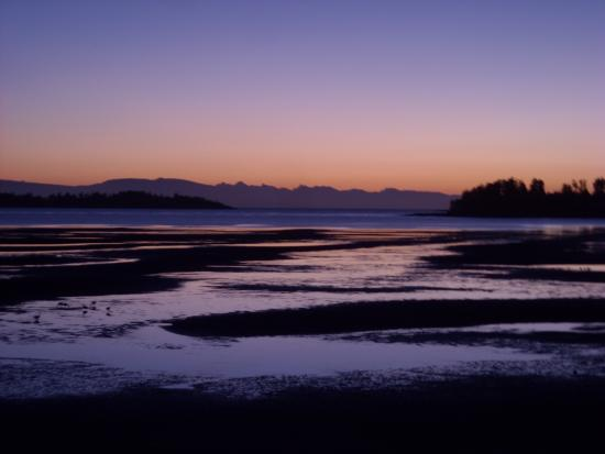 Madrona Beach Resort: view just before sunrise