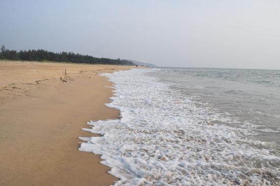 Kasarkod Beach