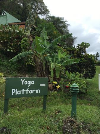 Daku Resort: On the way to the outdoor yoga shall