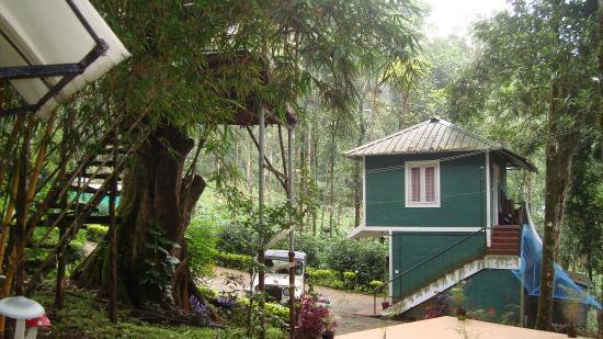 Blue Bells Valley Resort: homestay1