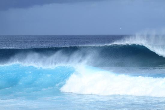 Cokes Surf Shack : Waves