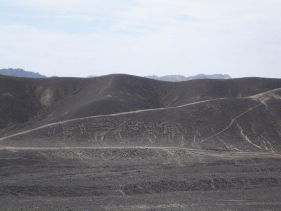 Geoglifos de Palpa: Geoglyphen