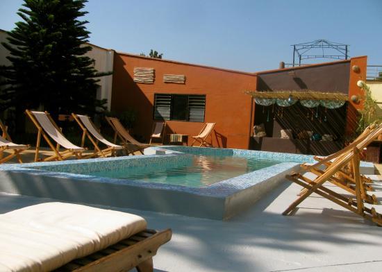 Madidi Lodge : pool side