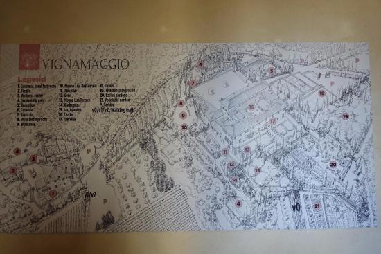 Vignamaggio: Территория