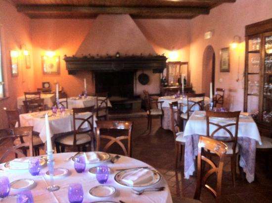 La sala con il grande camino - Foto di Trattoria Verdiana, Manciano ...
