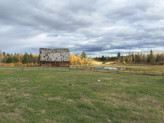 Cariboo, Kanada: Ausblick von der Terrasse