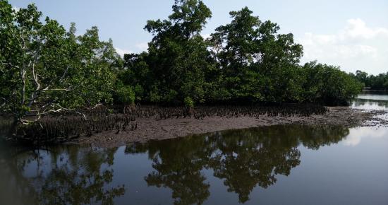 Manokwari, Indonesia: pemandangan di dalam