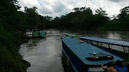 Provincia de Heredia, Costa Rica: Sarapiqui River