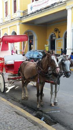 Coco Tours Honduras: 20151106_143403_large.jpg