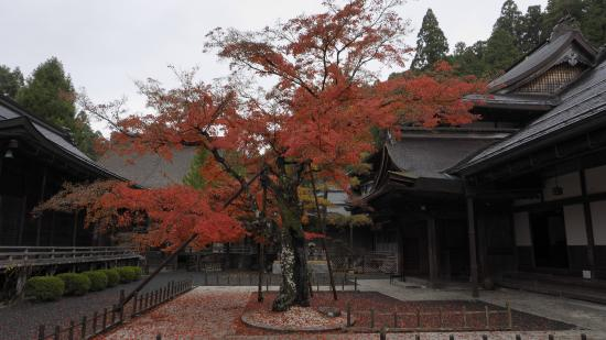 Ryusen-in Temple