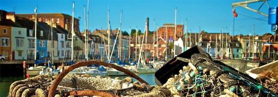 Weymouth, UK: George Bar