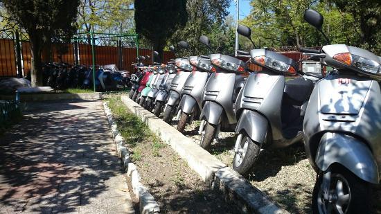 Scooters Rental Rentax.su