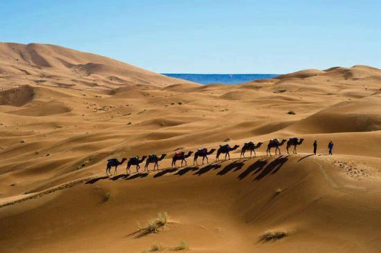 Merzouga 4x4: Excursiones en Camellos Marruecos - Merzouga4x4