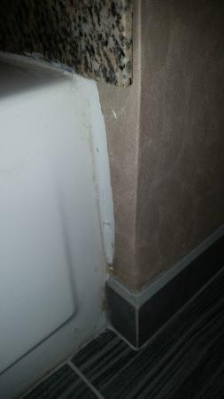 DoubleTree by Hilton Hotel Wilmington: Poor fit and quality