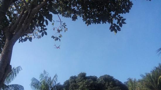 Parque Municipal Horto de Maruípe