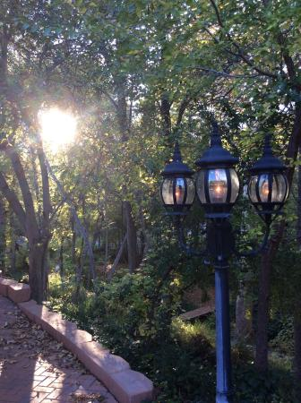 Creekside Inn at Sedona: A view from the yard