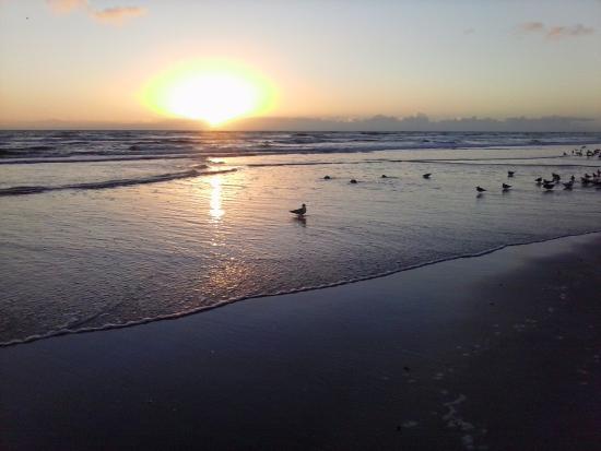 Seven Seas Resort : Sunrise from the beach