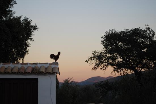 Finca Las Encinas: Stunning sunsets