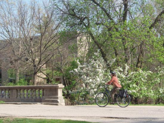 Lakes Nature Preserve At University Of Wisconsin Spring And A Bicyclist On The Bridge Over Willow Creek