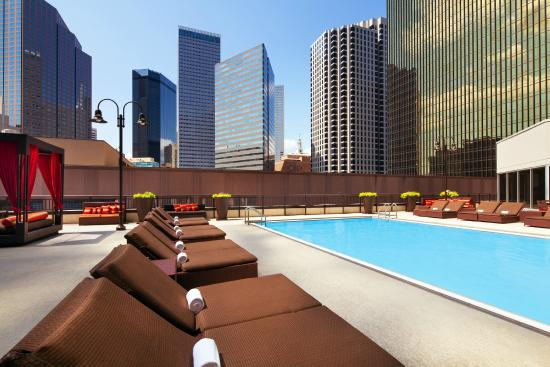 Sheraton Dallas Hotel Rooftop Pool