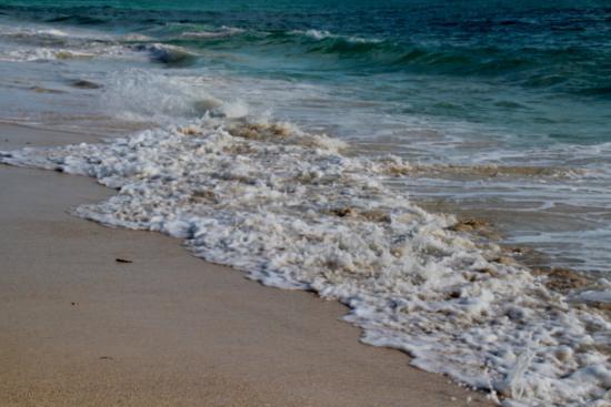 Northside Inn & Restaurant: Waves
