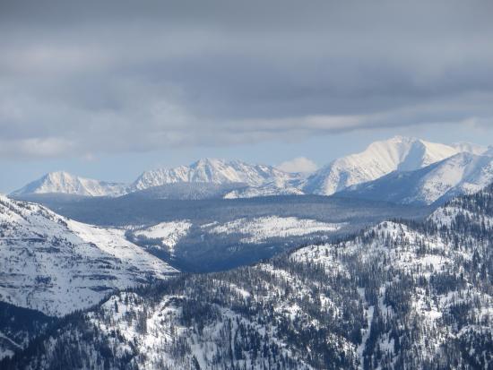 Fernie Alpine Resort: view