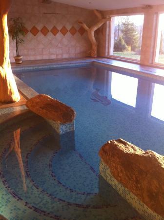 Snezne, Republika Czeska: Indoor pool
