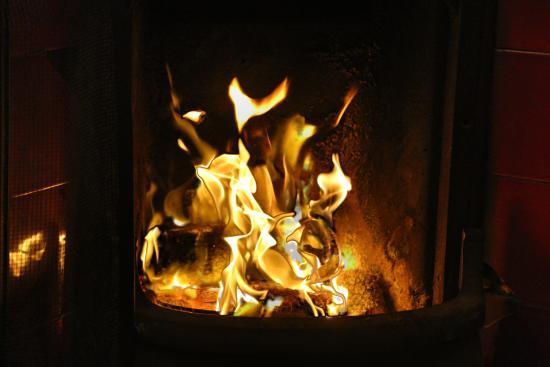 The Grapevine Hostel: Ce fameux feu de cheminée si agréable !