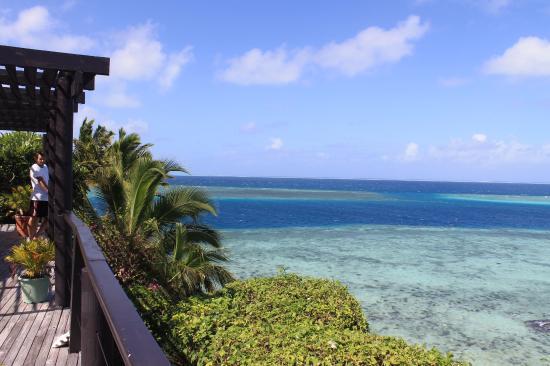 Wadigi Island Resort Tripadvisor