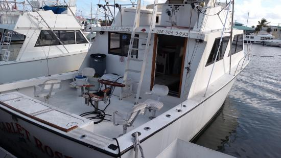 Deep sea fishing boat scarlet rose picture of scarlet for Deep sea fishing key west