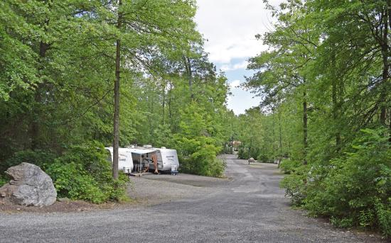 Yogi Bear's Jellystone Park Camp-Resort Gardiner: Campsites