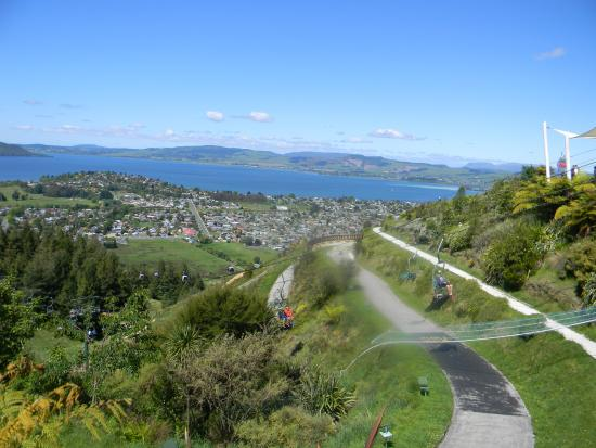 Best Car Rental New Zealand Forum