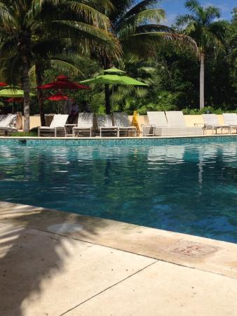 Hacienda Tres Rios: Pool