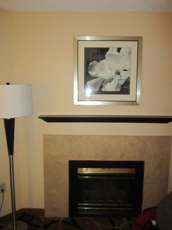 Hampton Inn Harrisburg / Grantville / Hershey: electric fireplace in living room area