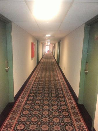 Americas Best Value Inn: P_20151111_070329_large.jpg
