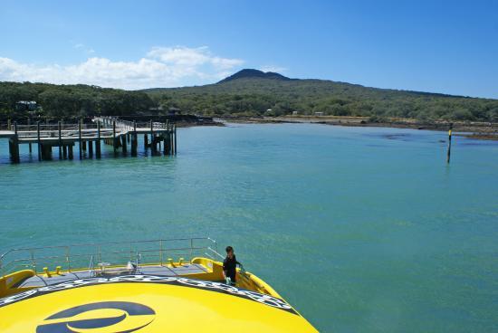 Explore - Auckland Harbour Sailing : Explore Rangitoto - Rangitoto Wharf