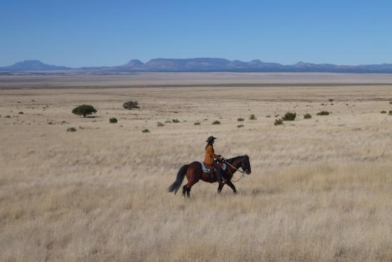 Magdalena, NM: Range riding