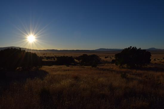 Magdalena, NM: Ranch grounds