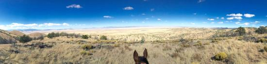 Magdalena, NM: View on a ride