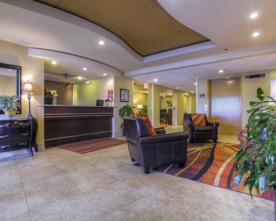 Clarion Inn & Suites: HOTEL LOBBY
