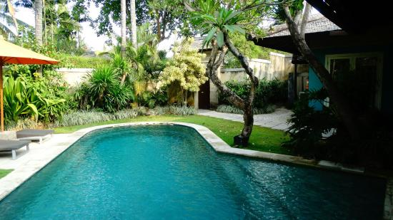The Ahimsa: Pool view from the living area