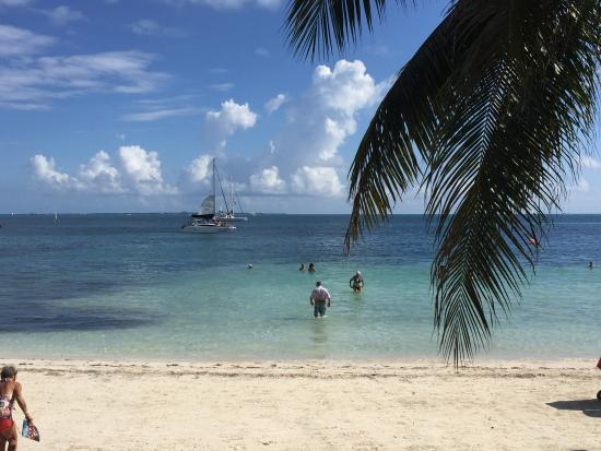 show topic adult vacations singles cancun yucatan peninsula
