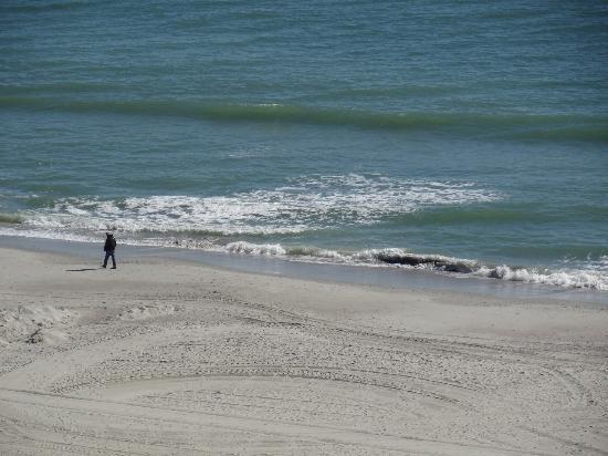 Shore Crest Vacation Villas: Beach