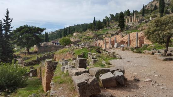 Delphi - Picture of Delphi Ruins, Delphi - TripAdvisor